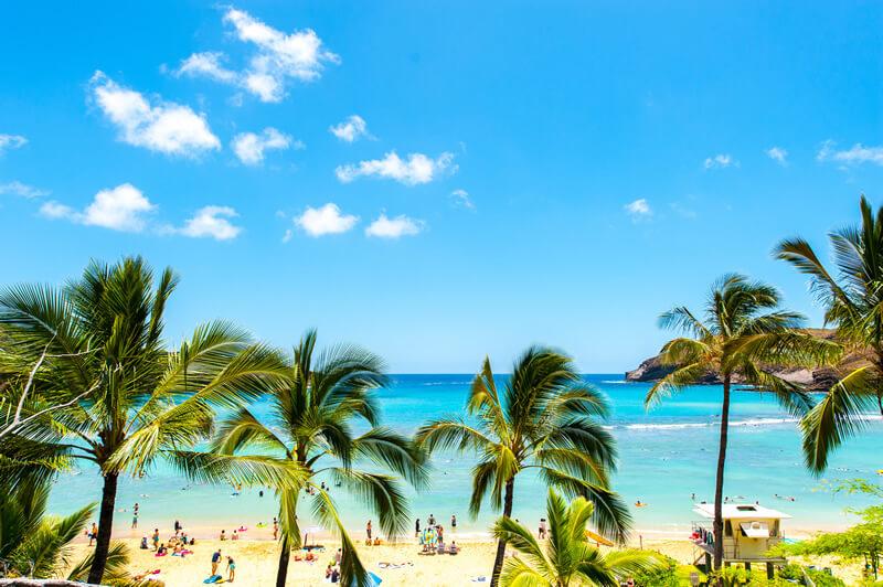ハワイへ行く1週間前には「ESTA申請」「外貨両替」「WiFiレンタル」を準備しておこう!